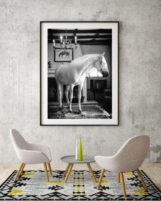 Hässtavla föreställande en lusitano i ett vardagsrum