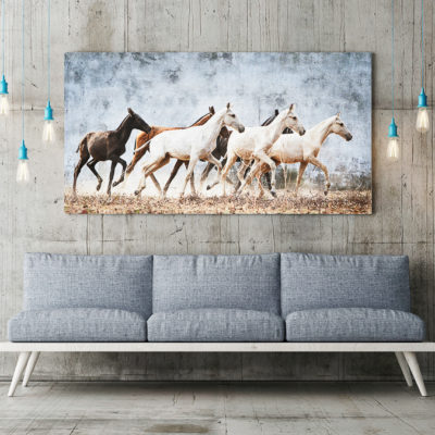 Hästtavla föreställande en flock unga lusitanohästar